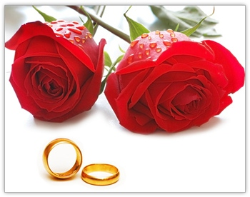 heiraten in zoerbig